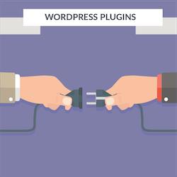 Wordpress Freelancer